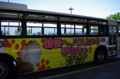 IMGP7707.jpg