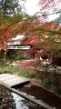 鎌倉20131130-5