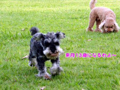 20120717_4.jpg