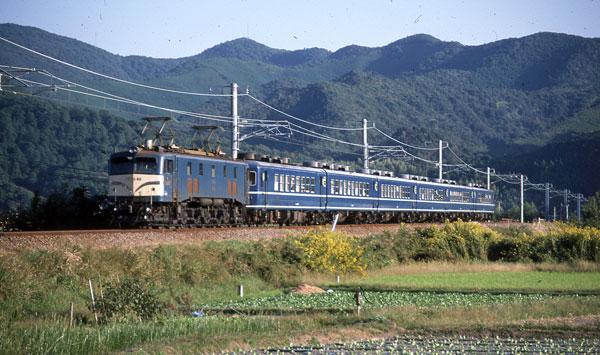 851027tsubaki-kiitonda022.jpg