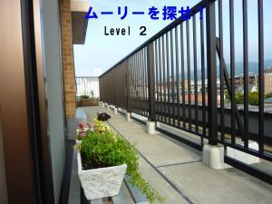 P10508931_convert_20110811152655.jpg