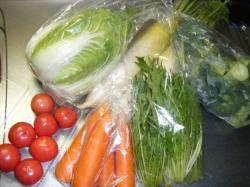 お野菜_convert_20101213221230