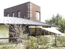 むささび食堂-area cafe12