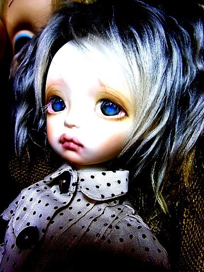 RIMG1237_20120531205159.jpg