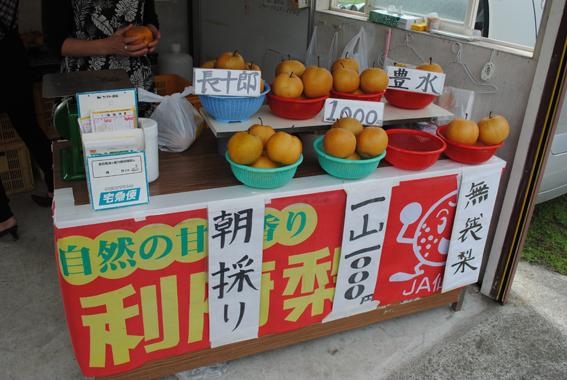 nashi_1.jpg