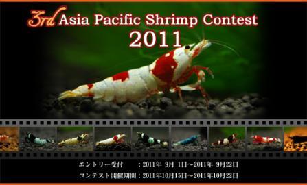 アジアパシフィックシュリンプコンテスト2011