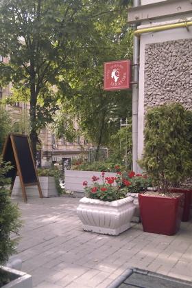 summer cafe 4