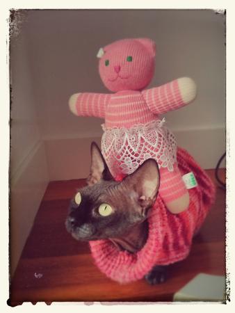 pinkteam