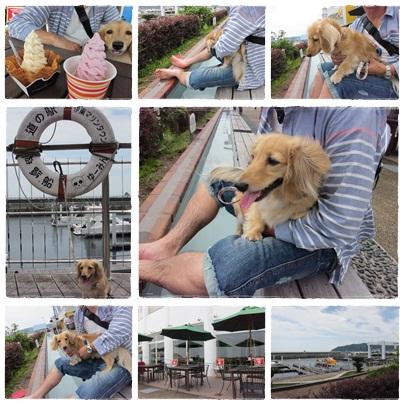 伊豆旅行 2012-6