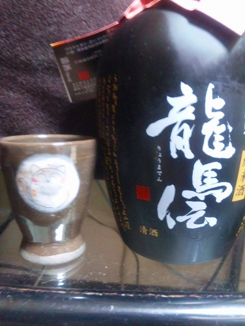 gettukayoukou110504_232420.jpg