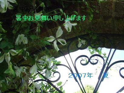 55fe2c05.jpg