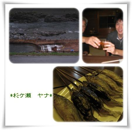 杉ケ瀬ヤナ