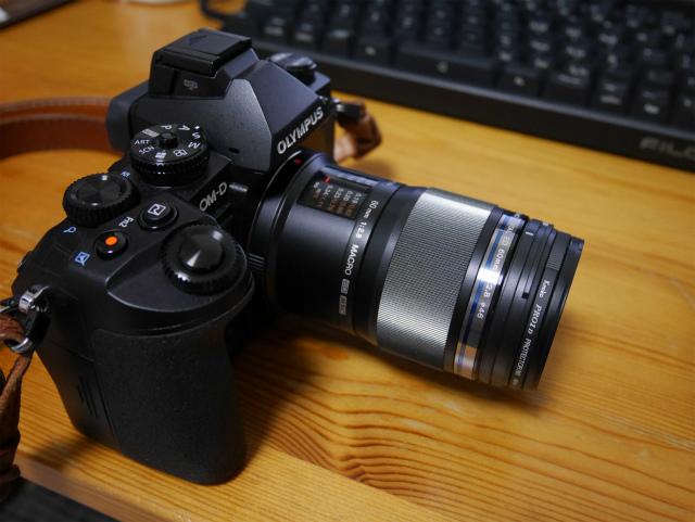 sP1000461.jpg