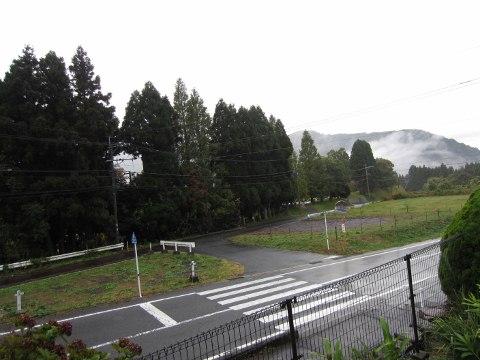 2011_11_6雨
