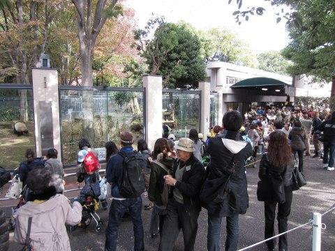 2011_11_22東京3