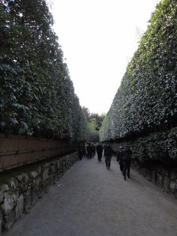 2011_11_28京都