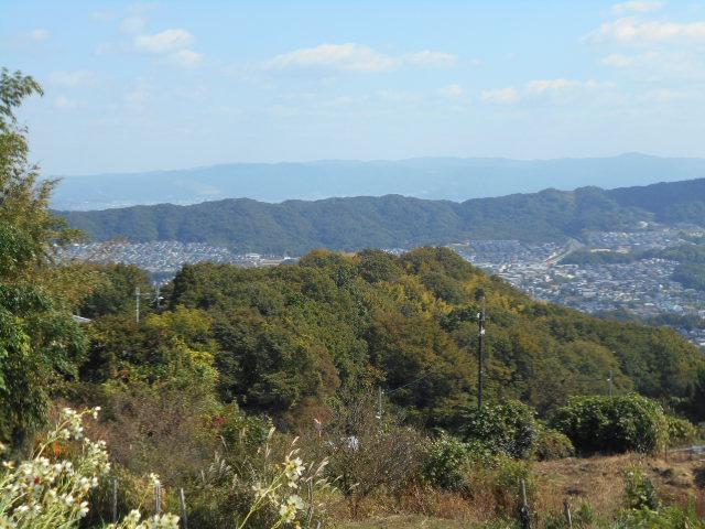 奈良を望む