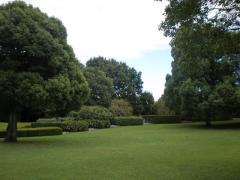 公園2-7