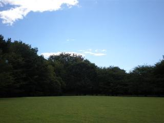 公園3-5
