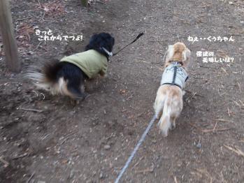 3-11_20120112202552.jpg