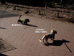 3-1_20120111211519.jpg
