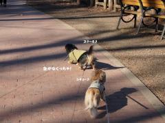 3-2_20120111211517.jpg