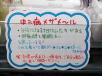 20121209_201356.jpg