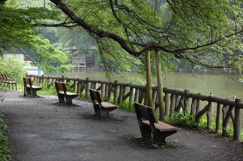 雨とベンチ