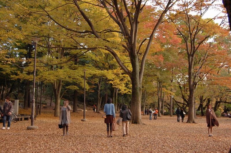 井の頭公園3