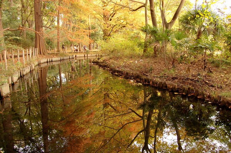 三宝寺池3