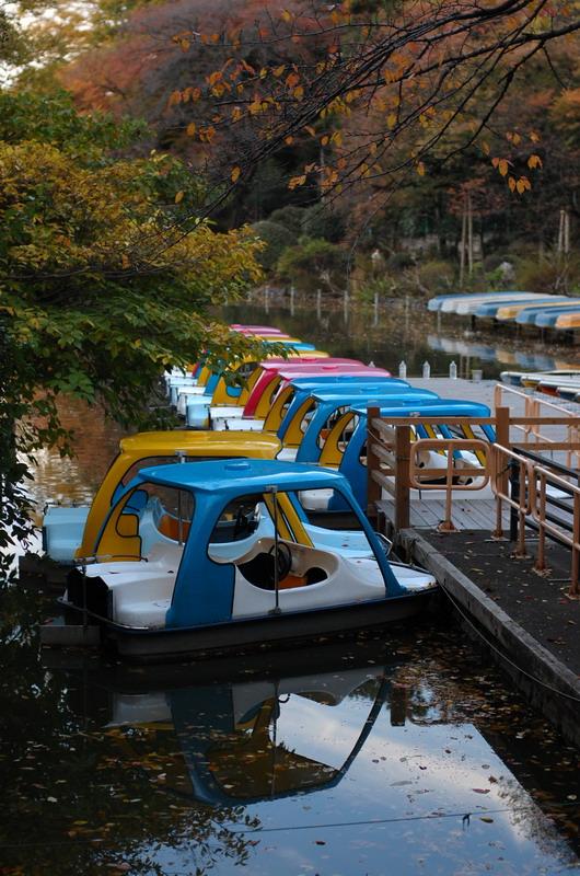 上池ボート