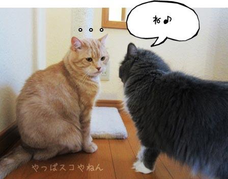オ・ネ・ガ・イ