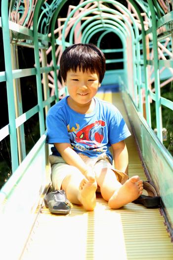 daidaikichi1.jpg