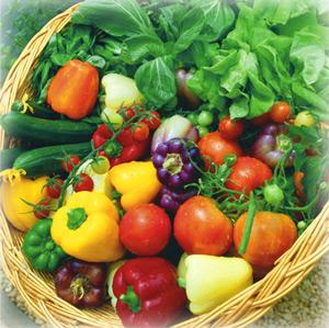 HarvestBasket300.jpg