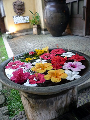 石垣島ダイジェスト2011。
