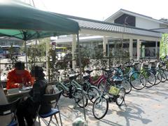 熊本市観光型レンタサイクルが始まりました!
