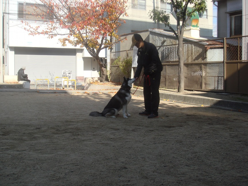 トレーニング3