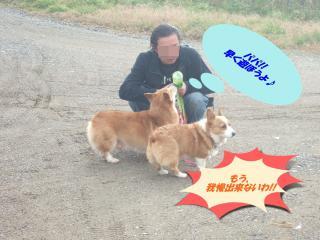 2010_1210上越0017