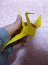 nop044_origami.jpg
