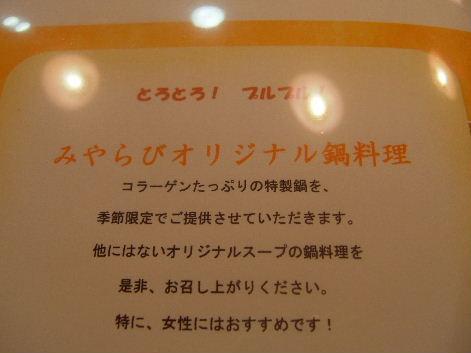 2010_0123画像0021