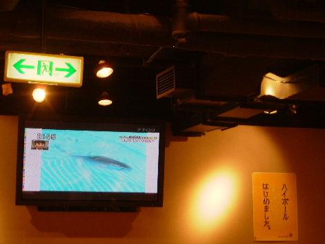 2010_0819画像0063