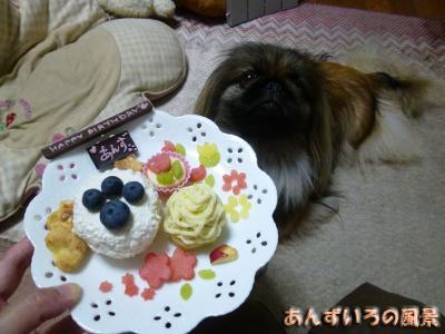 あんず3歳の誕生日