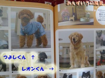 犬吉猫吉デリバリースタイル