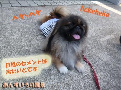 OW ペットメモリアルパーク動愛園