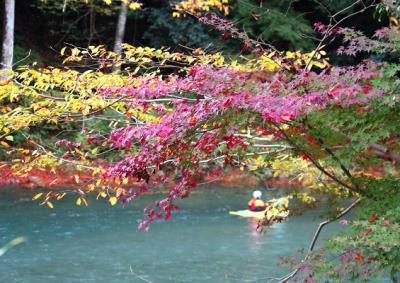 紅葉とカヌー
