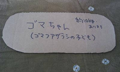 CA6TPDQ4.jpg