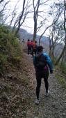 山桜に見とれる人々