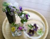 庭のお花をお部屋に#10047;