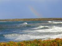 rainbowinismor10103