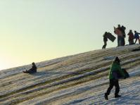 sleddingpheonixpark3